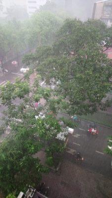 雨季がやってきたのサムネイル